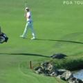 Porque tem um jacaré em um campo de golfe?