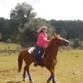 cavalo baiano fodasekkkk