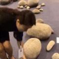 Paper rocks