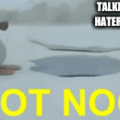 pingu v.s. the haters