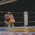 Wrestling! Midgets are funny