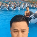 When youre suddenly attacked by a pod of killer whales... Asians...