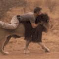 Heman e gato guerreiro