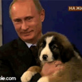 Putin is adorable