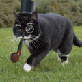 Loop so fancy I need a second monocle