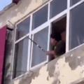 como eliminar um ninho de vespas próximo a sua janela