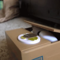 sneaky robot cat