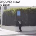Dave!