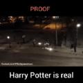 Harry potter existe