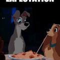 Les spaghettis c'est la vie