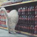 gato exterminador do futuro