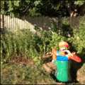 Luigi sofrendo de overdose