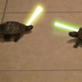 Star wars turtles